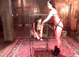 Caged And Horny Sex Slave